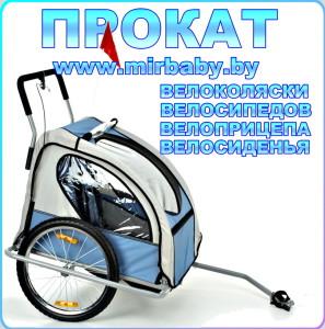 Детский велоприцеп карета напрокат Велоколяска в аренду МАЛИНОВКА МИНСК