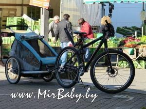 Велоприцеп — дополнительное приспособление для велосипеда в прокат